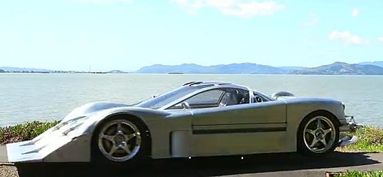 Sea Lion Car