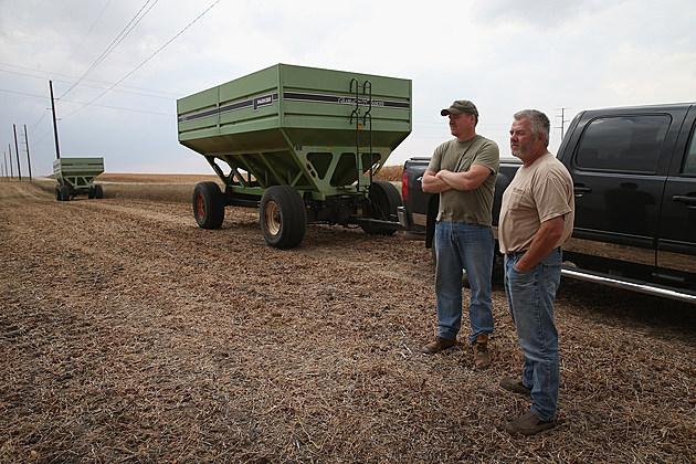 Farmers Standing in Feild